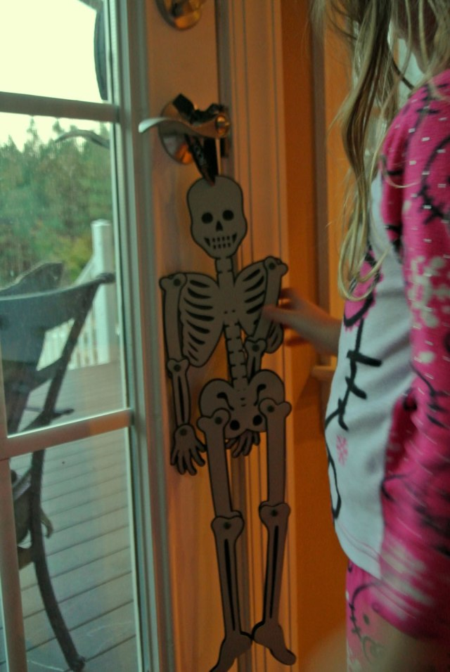Skeleton-Hartly